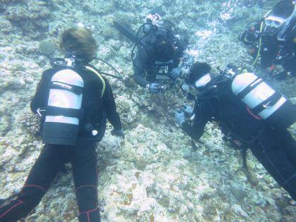 体験ダイビング283