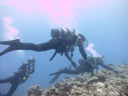 体験ダイビング284