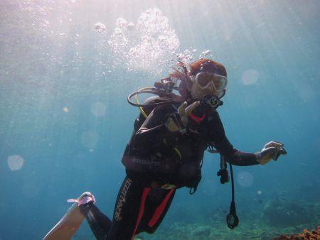 ビーチエントリー体験ダイビング