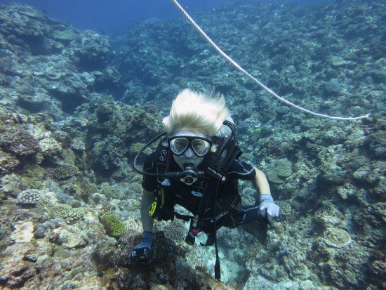 体験ダイビングPAX