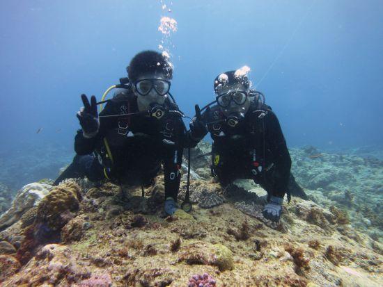 外洋で親子体験ダイビング