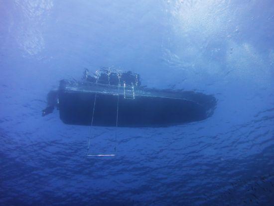 バリ透けボート